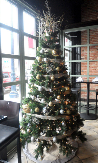Midori Sushi and Martini Lounge's tree located on East Broadway Street.