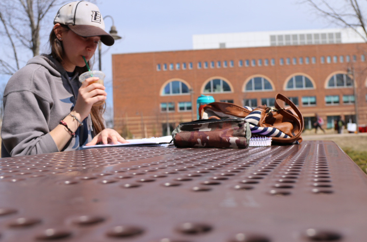 Shelby Brown, a CMU student in her junior year, studies for a mammalogy exam at a picnic table in the Fabiano Gardens on April 9, 2014.