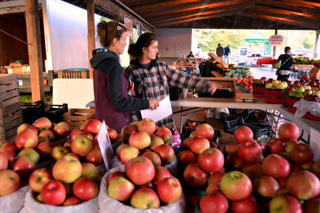 Amy Rasch from Lakeside Orchards in Conklin, Mich. directs her daughter, Madison, where to place apples on Sept. 25, 2014. Since Lakeside Orchards is quite a distance from Mount Pleasant, they family only come to the Farmers' Market after peach season begins. (Photo | Andrea Henk)