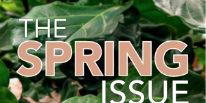 Dive into GC's Spring 2017 Issue